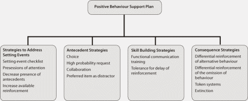Figure 1: Components of a Positive Behaviour Support Plan with example interventions.