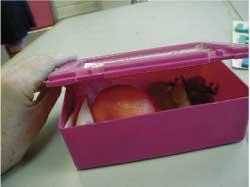 Photo of Ynez's lunchbox